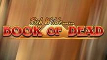Play'n GO's Book of Dead slot.