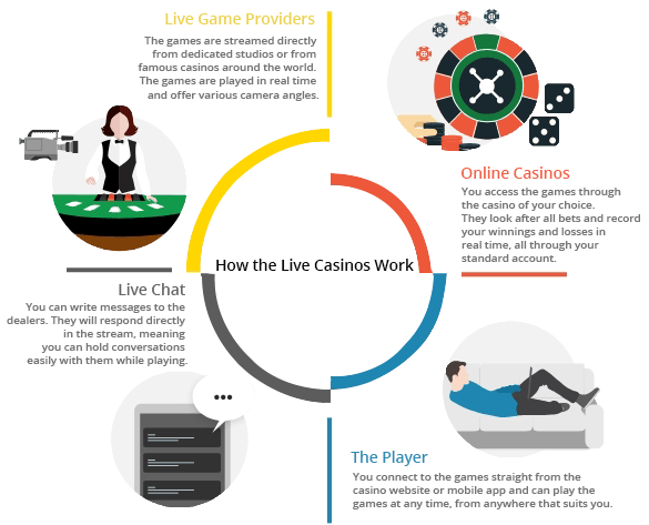 Infographic explaining the way in which the live casinos work, showing the relation between the software providers, online operators, live dealers and players.