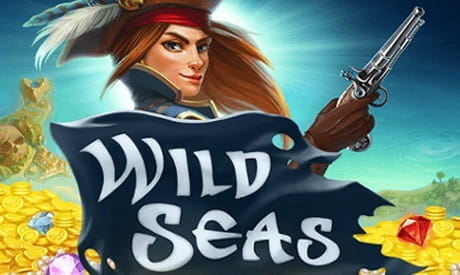 Image showing the Wild Seas slot game