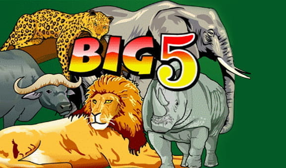 The opening screen of the Big 5 slot.