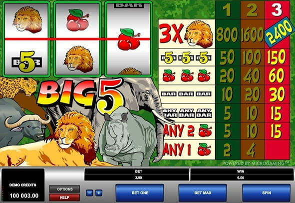 In-game view of the Big 5 online slot from Microgaming.