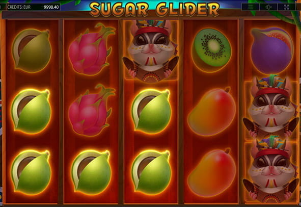 Sugar Glider online slot during the game.
