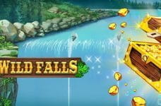 The Wild Falls logo and a gold chest superimposed over a waterfall.
