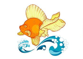 A drawing of a lucky goldfish.