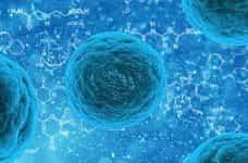 Virus and bacteria molecules.