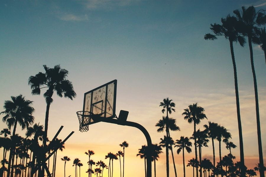 A basketball hoop and backboard at sunset with palm trees.