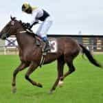A jockey rides a race horse at the Hipódromo de San Isidro in Buenos Aires, Argentina.