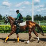 A jockey on a horse.