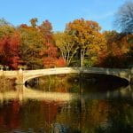 A fall day in Central Park, New York City, New York.