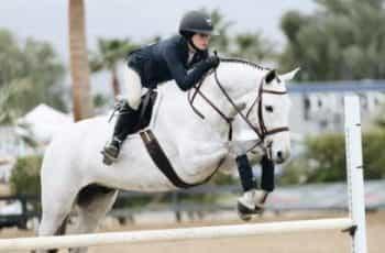 A jockey races their horse over a jump.