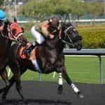 Two horseracing jockeys racing head-to-head on their horses.