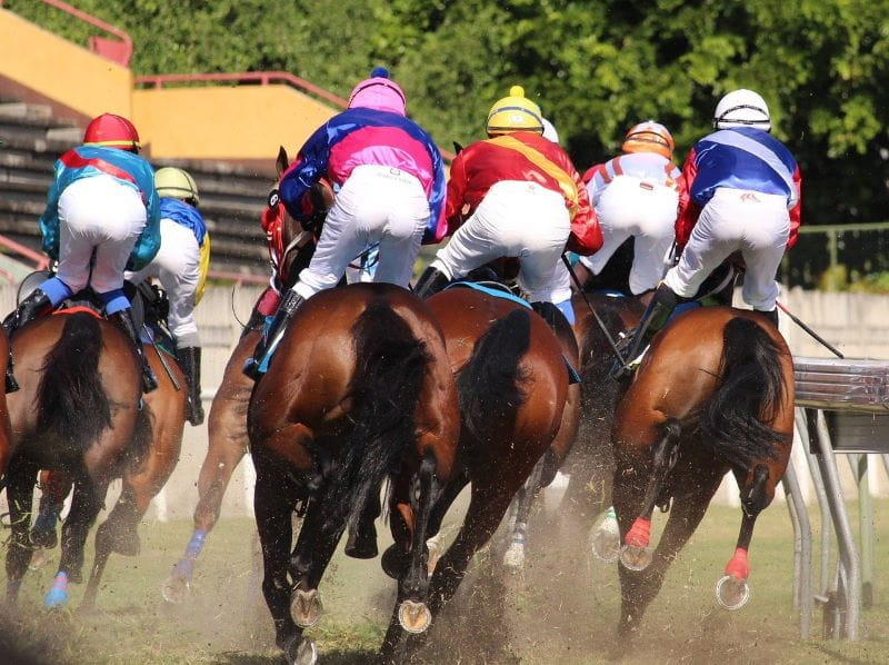 Football fans fight at newbury races betting betting odds cricket ashes