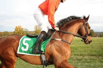 A jockey in an orange jacket rides a horse.