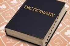 A dictionary.