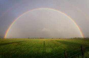 A full rainbow over a green grassy field.