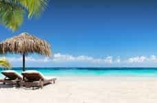 A tropical beach.