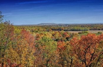 Fall foliage in the Arkansas countryside.