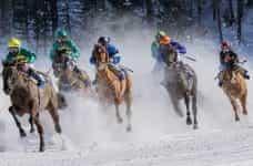 Six jockeys racing their horses in full gallop in the snow.