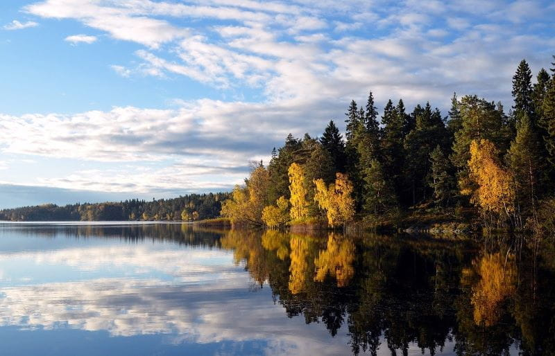 Gambar pastoral lanskap Swedia, menampilkan danau dan hutan lebat yang berbatasan dengan air.