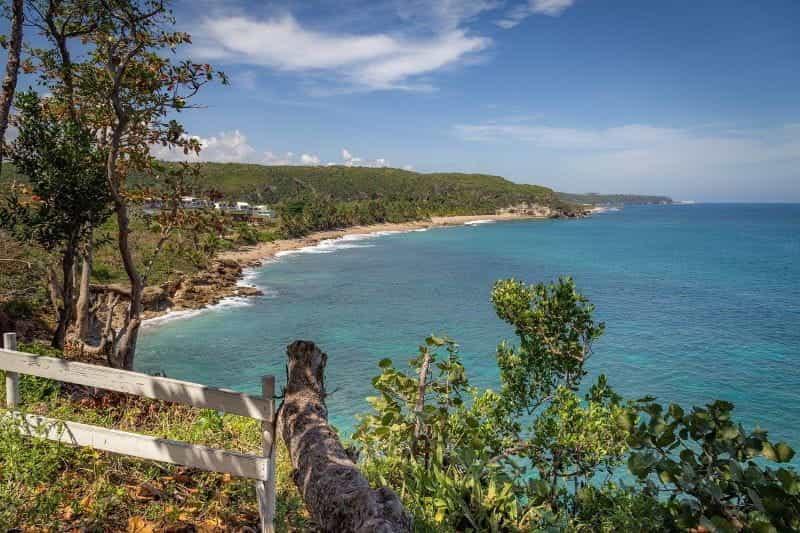 Garis pantai hijau Puerto Rico.