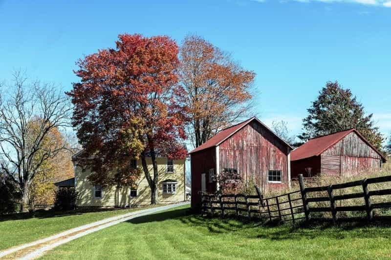 Rumah pertanian khas Virginia, dengan dua gudang kecil di latar depan.