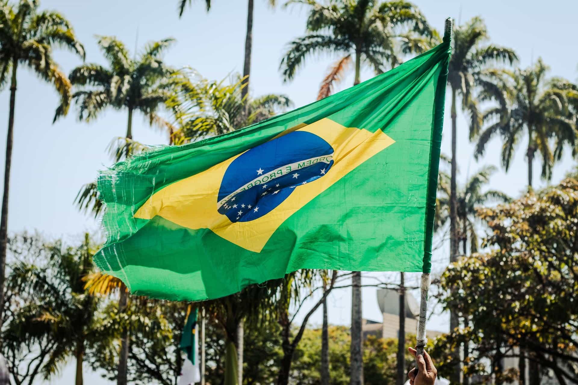 Bendera Brasil melambai tertiup angin di depan pohon palem dan langit biru.