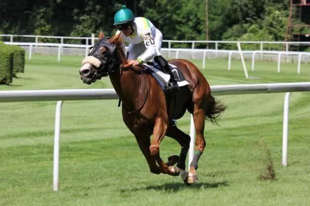 Seorang joki balap kuda.